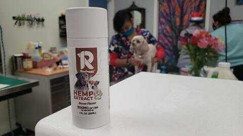 cbd for dogs recommended by vet