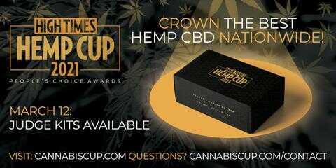 hemp cup judge kits for sale